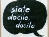 Pallotti_1_1_docile