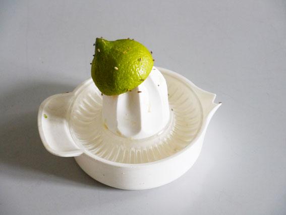 Zitronenpresse, Foto, Größe variabel